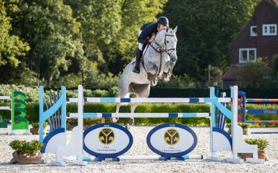 Modern sporthorses in 3rd edition of The Youngsters